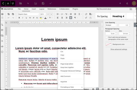 Vorschau des der Webanwendung Onlyoffice am Beispiel eines Word-Dokuments.
