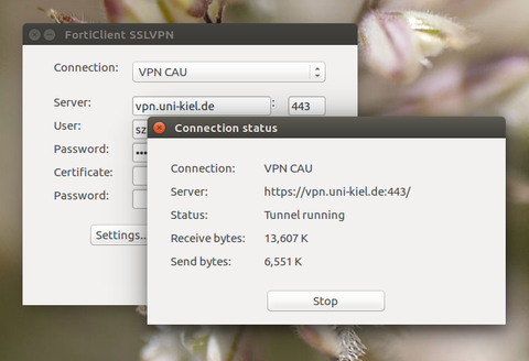 Forticlient unter Linux — Rechenzentrum
